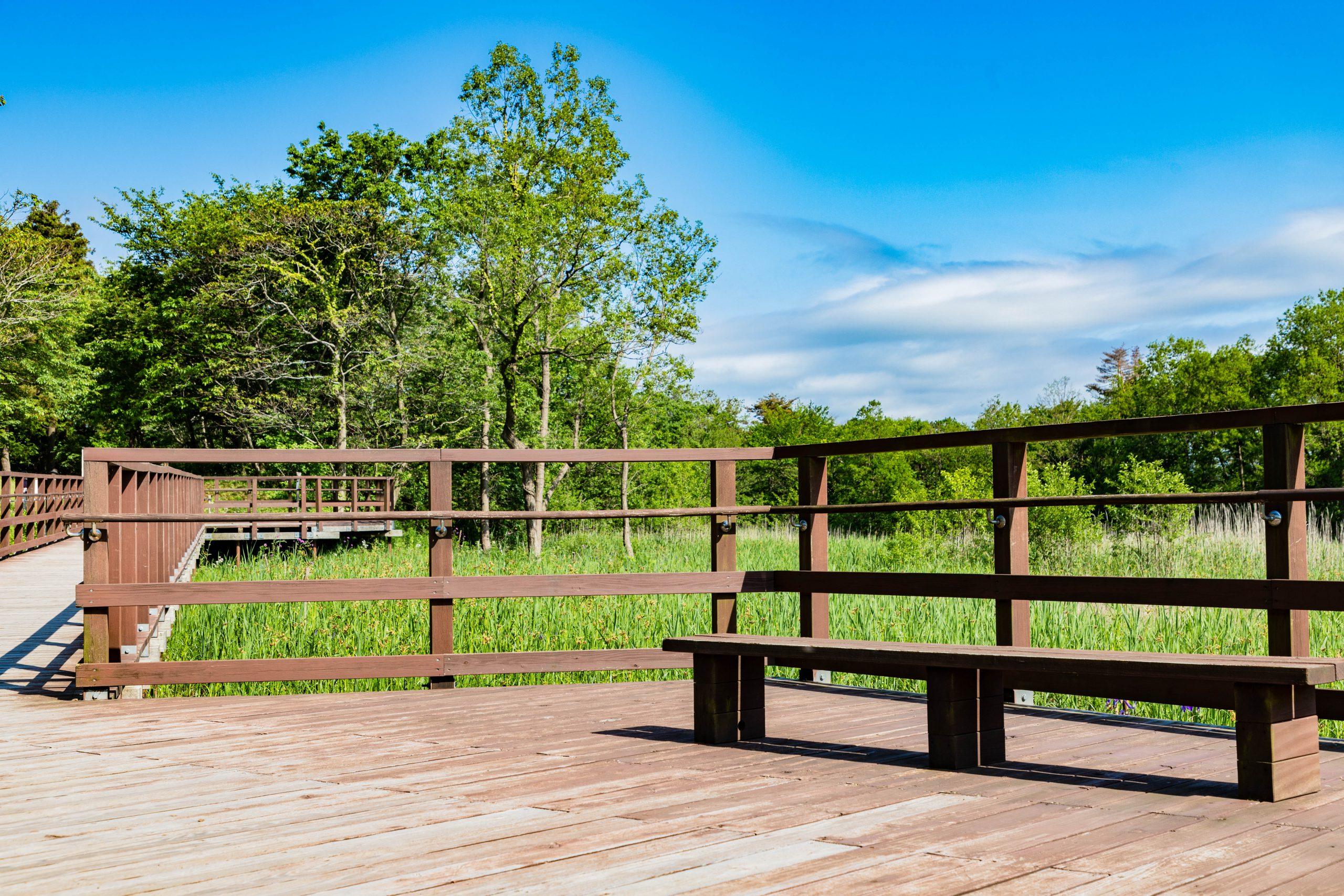 大潟水と森公園水上回廊