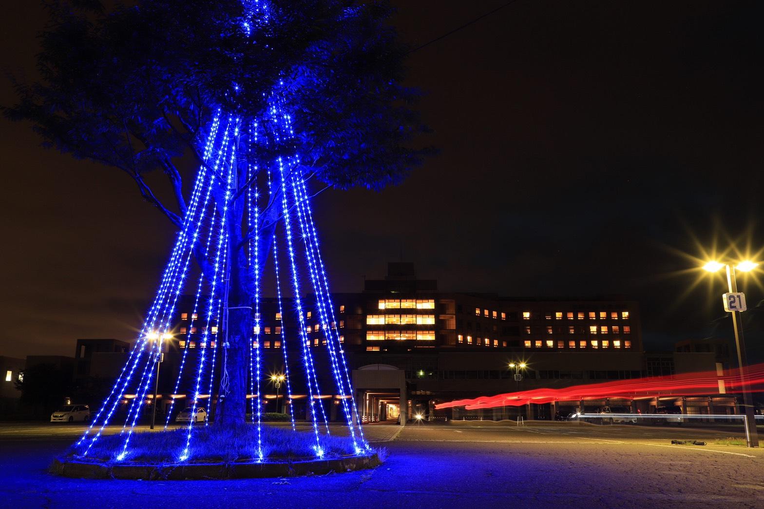 blue-main